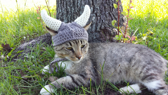 kitty-cat-viking-hat-04